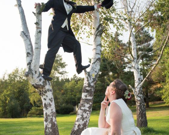 ženich na stromě | Štilec