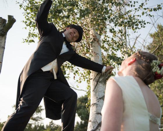 manžel na stromě | Štilec