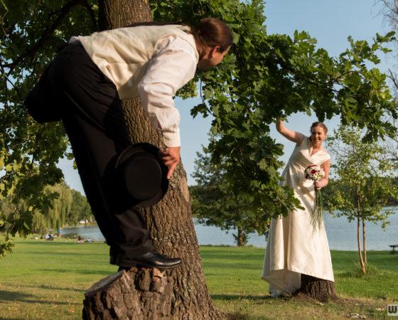 manželé na pařezech | Štilec