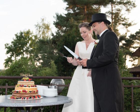 krájení svatebního dortu | Štilec