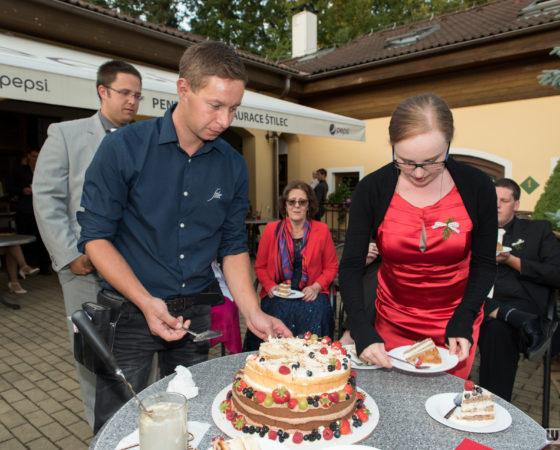 krájení dortu | Štilec